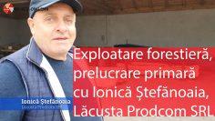 Despre exploatare forestieră și prelucrare primară cu Ionică Ștefănoaia – Lăcusta Prodcom SRL