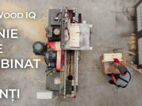Linie de Imbinat in Dinti – Wood IQ